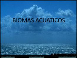 ICAGRA - Acuático