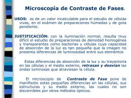 microscopía de contraste de fases.